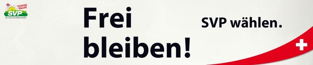 logo_wahlen2015